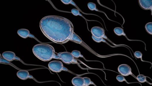 Espermograma e teste de fragmentação do DNA espermático: quando fazer?