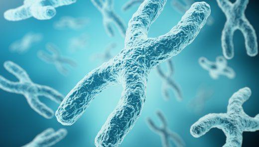 Coenzima Q10: o uso na Reprodução Humana