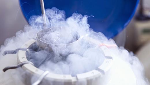 Congelamento de Embriões — Ciência a Favor da Vida Durante a Pandemia do Coronavírus