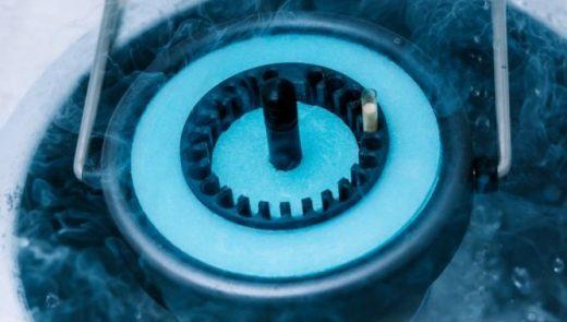 Congelamento De Embriões E Óvulos — Por Quanto Tempo Podem Ficar Congelados?